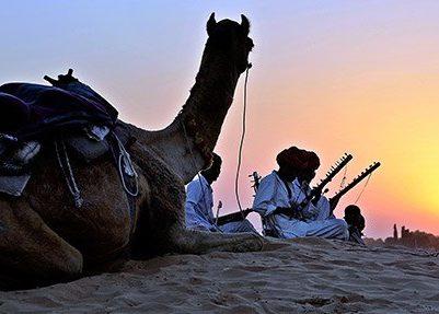 Camel Trekkiing   India   Asia